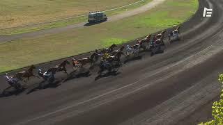 Vidéo de la course PMU PRIX DORADO