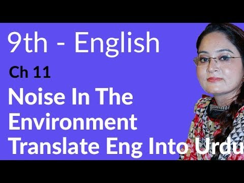 English Unit no 11 Translation - English Unit no 11 Noise in the Environment - 9th Class