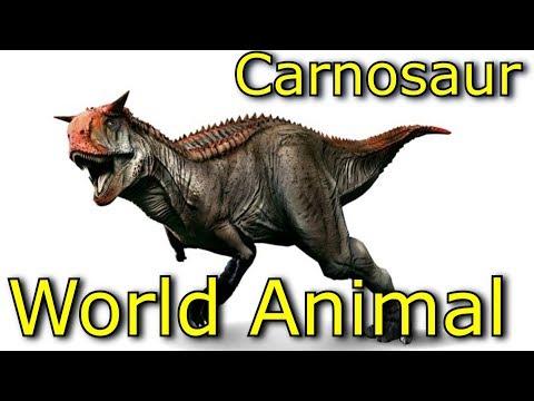 Jurassic World Animal l Planet Dinosaurs l Carnotaurusl Learning Video for Kids l Part 6
