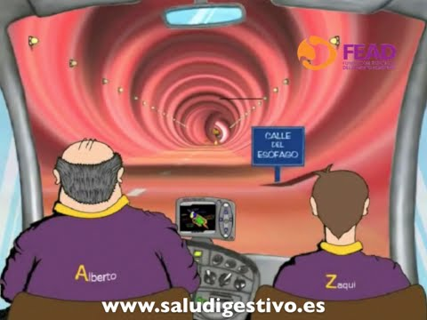 viaje-virtual-por-el-sistema-digestivo---la-primera-digestión-de-zaqui