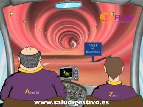 Viaje virtual por el Sistema Digestivo - La primera digestin de Zaqui