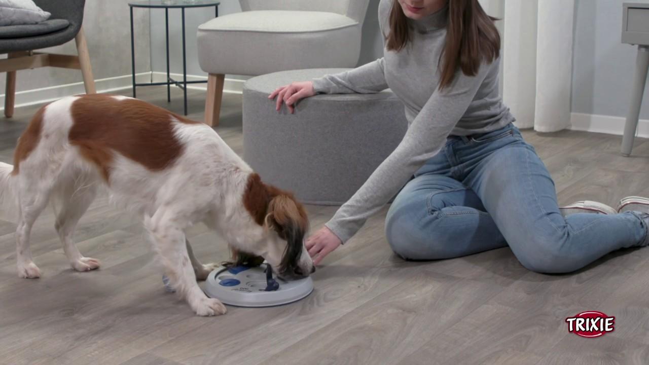 TRIXIE Dog Activity Flip Board Strategiespiel für Hunde