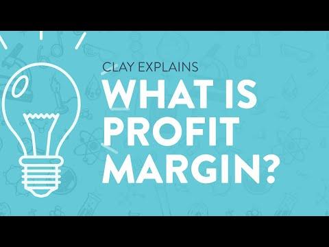 What is Profit Margin?