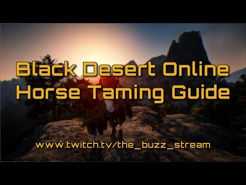 Black desert online horse coupons