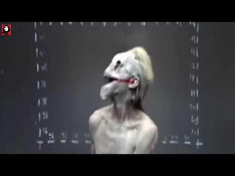 Толян Линкин вернулся | Vlog Самое страшное видео | #10