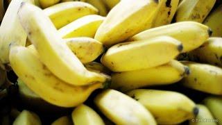 Banana Disease - Behind the News