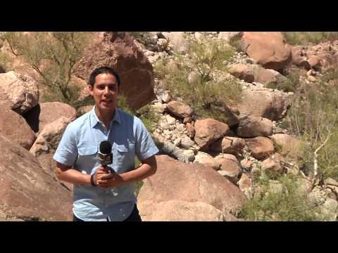 El Cañón de Guadalupe, un Oasis en el desierto de Baja California.