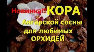 Новинка для ОРХИДЕЙ!!!Субстрат из коры Ангарской сосны.