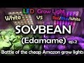 White LED vs Red Blue White LED Grow Test w/Time Lapse - Soybean Ep.2 *Read Description