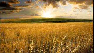 Kevin Kern - Fields Of Gold