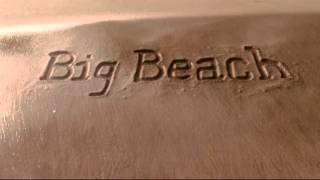 The Weinstein Company/Big Beach/likely story (2011)