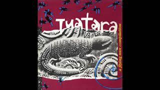 Tuatara – A Flying Nun Compilation (Full Album)
