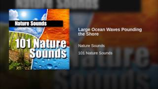 Large Ocean Waves Pounding the Shore