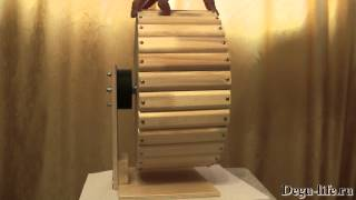 Деревянное колесо для дегу d=30см