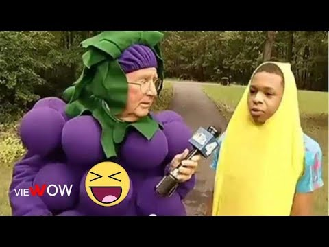 Professional News Anchors And Reporters Fail Compilation: The Most Hilarious News Reporter Moments