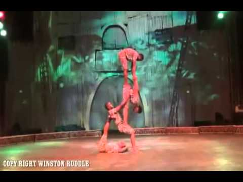 AA008 African Acrobat
