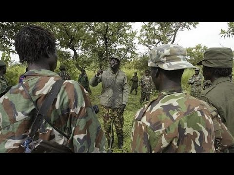 LRA rebels step up attacks, abductions in Central Africa - report