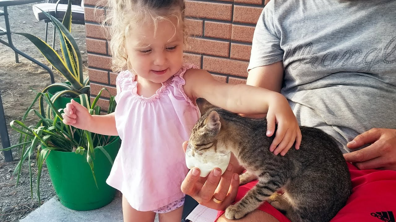Cute Baby Lile Meeting and Feeding Kitten for the first time