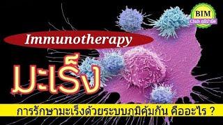 Immunotherapy รักษา มะเร็ง ด้วยระบบภูมิคุ้มกันตนเอง