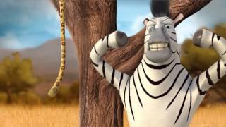La storia di Zac la Zebra