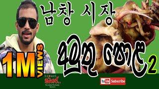 පව් කරන්න  මිනිස්සු ඉන්න කොරියාවේ පොල l PART 02 l남창 옹기종기 시장 🇰🇷  Pottery Market for south korea 🇰🇷