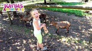 Катя в парке дикой природы / Животные / Зверюшки / Zoo / Контактный зоопарк