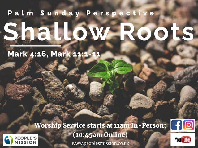 Shallow Roots (Mark 4:16, Mark 11:1-11), Palm Sunday, 28.03.21