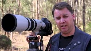 Canon EF 200-400mm f/4 L IS USM : Pre-Production Sample Lens (Vimeo)