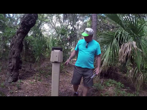 Little Talbot Island SP and Campground Review (Northeast Florida)