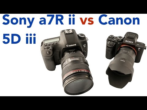 Top 5 reasons the Sony a7Rii is better than the Canon 5Diii