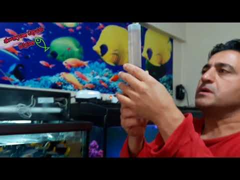 ARTEMİA EN PRATİK HAZIRLANIŞI, ARTEMİA NASIL YAPILIR, Akvaryum Balıkları
