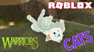ROBLOX [BETA] Warrior Cats: Ultimate Edition! New Customization! Animations, ADORABLE Running!
