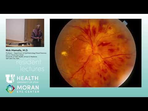 Retina Pathology