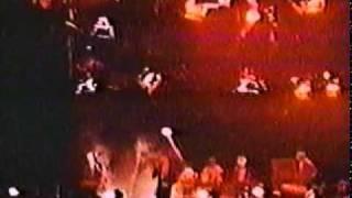 Depeche Mode - tora tora tora (Live 1981)