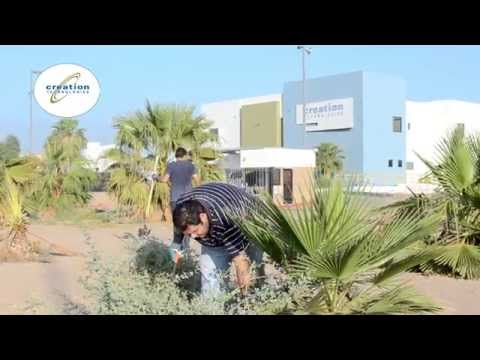 Creation Technologies Mexicali - Adopting Public Green Areas