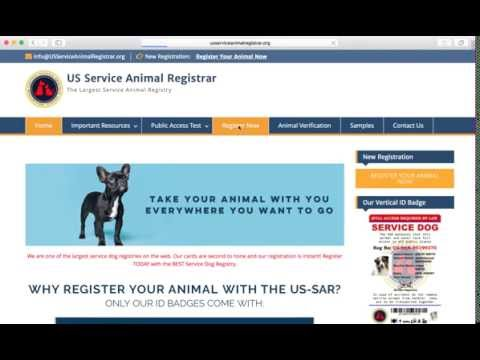 How To Instantly Register Your Service Dog