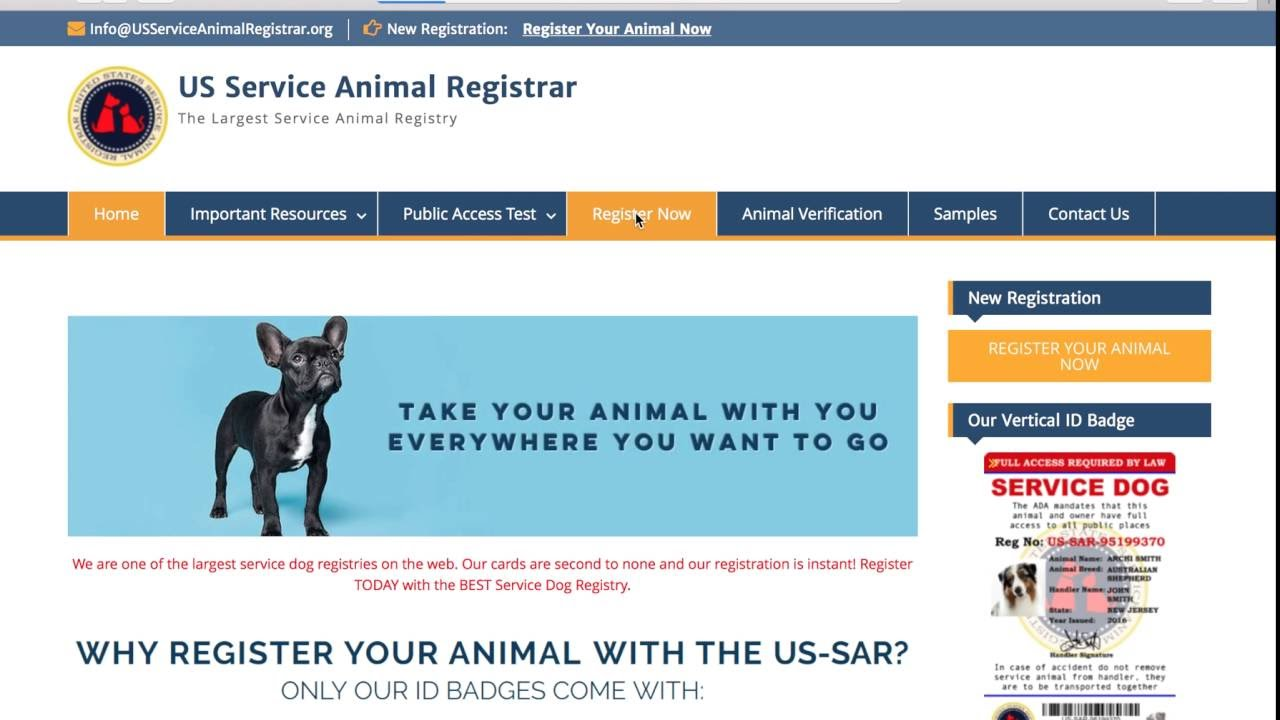 How To Register A Service Dog >> How To Instantly Register Your Service Dog Youtube