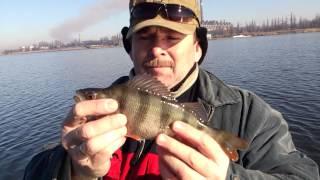 рыбалка в Донецкой области весной на спиннинг. Окунь на Старобешево.