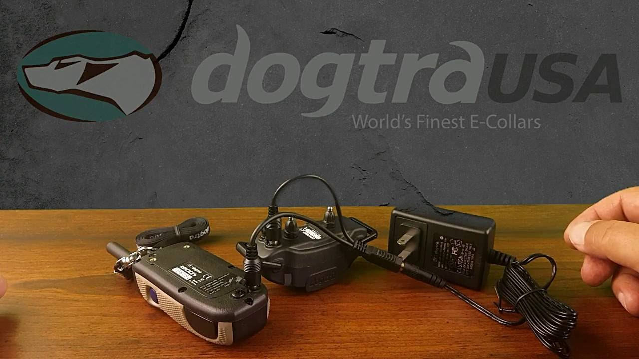 Dogtra 1900s Remote E Collar Review Dogtrausa Com