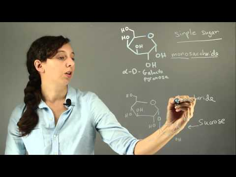 Why Is Galactose Classified as a Simple Sugar? : Chemistry H