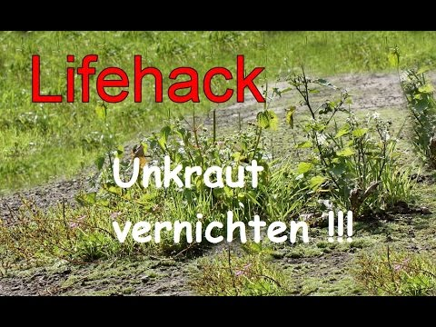 unkraut mit hausmittel entfernen bek mpfen vernichten unkrautvernichter life hacks youtube. Black Bedroom Furniture Sets. Home Design Ideas