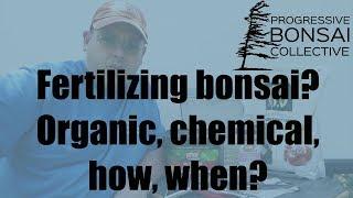 Fertilizing Bonsai: Organic, chemical, how, when?