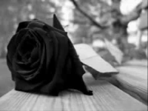 Rosas tristes Grupo Bryndis