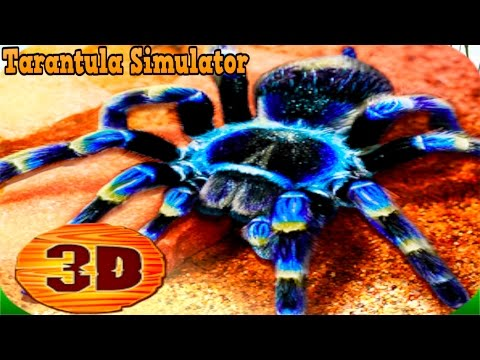 🕷🕸👍Tarantula Simulator 3D - By  WonderAnimals Simulation - iTunes/Android
