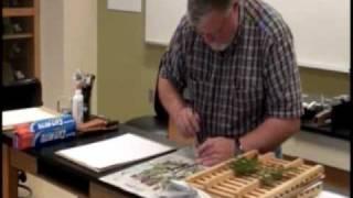 Herbarium Mount