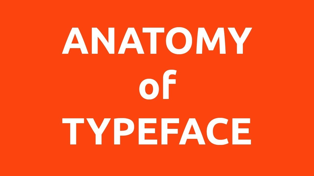What is Typography? Every Beginner Graphic Designer must know - YouTube