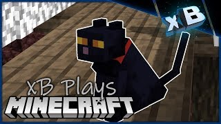 Viral Internet Cat Video  Xbcrafted Plays Minecraft 1.14  E33