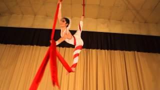 Aerial Silk Act
