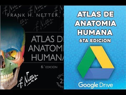 descargar-atlas-de-anatomía-humana-netter-ilustrado-gratis-por-google-drive-(original)