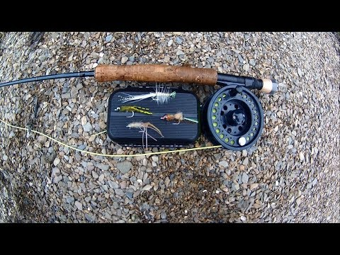 Shore Saltwater FLY FISHING - Sea Bass On SHRIMP FLIES